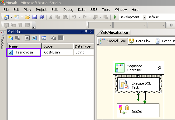 SSIS 2008 Variables